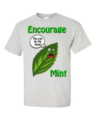 Encourage Mint T-Shirt (ash)
