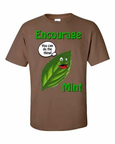 Encourage Mint T-Shirt (chestnut)