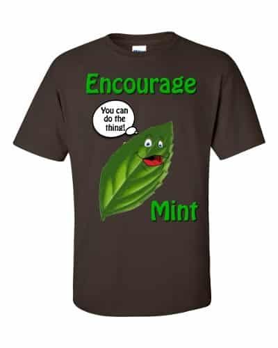 Encourage Mint T-Shirt (chocolate)