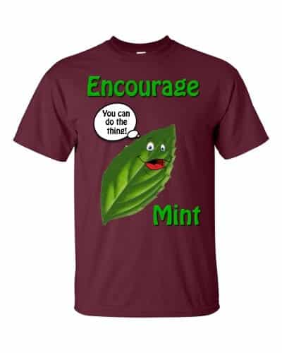 Encourage Mint T-Shirt (maroon)