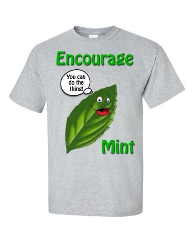 Encourage Mint T-Shirt (slate)
