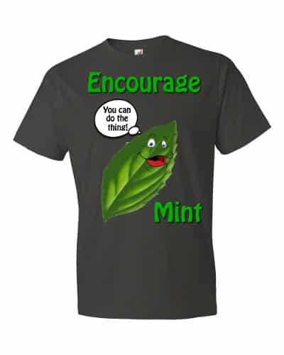 Encourage Mint T-Shirt (smoke)