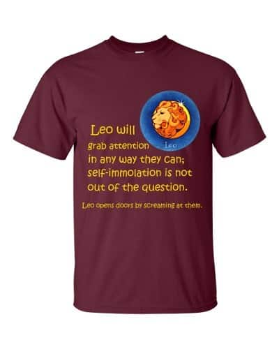 Leo T-Shirt (maroon)