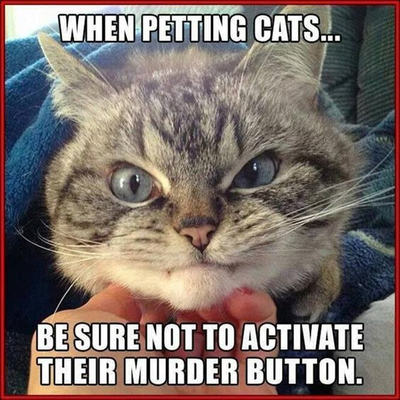 Don't activate the murder button