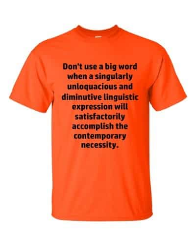 Don't Use Big Words T-Shirt (orange)
