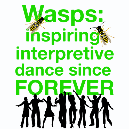 Wasps Inspire Interpretive Dance