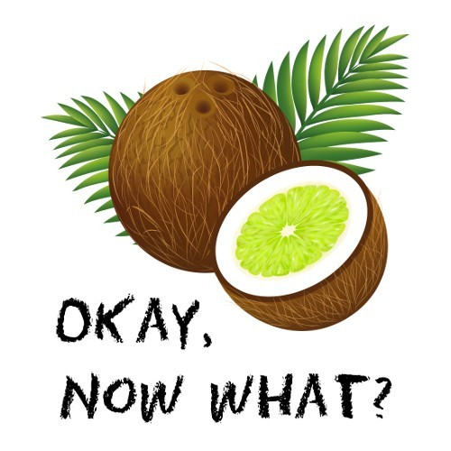 You Put the Lime in the Coconut