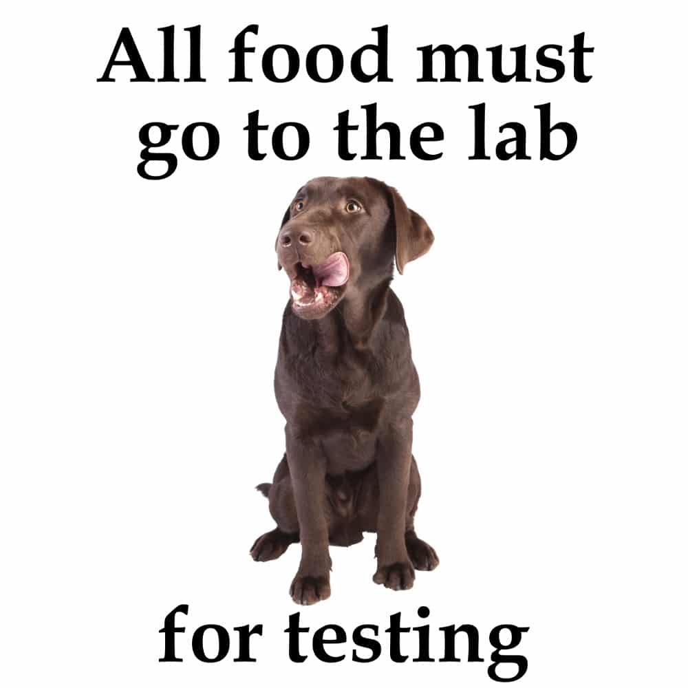 All Food Must go to the Lab Mug