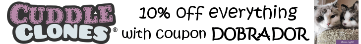 kitty coupon